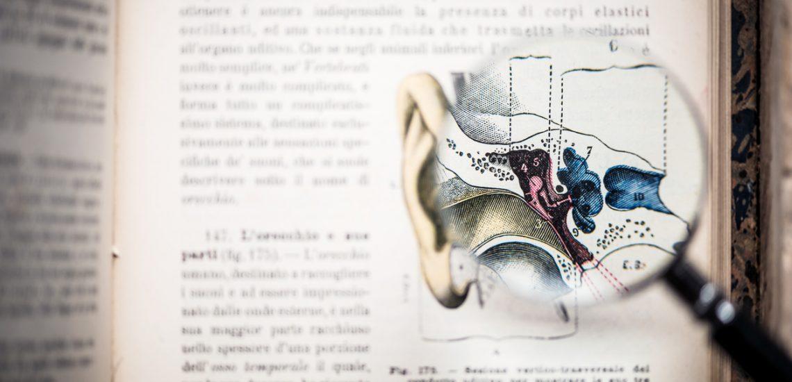 Toutes vos questions sur le système auditif sur audicentre.fr